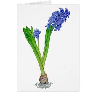Spring Hyacinth Card