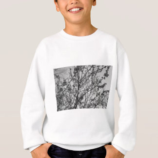 Spring in Black and White Sweatshirt