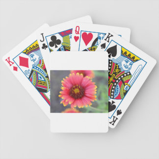 Spring in Bloom Bicycle Playing Cards