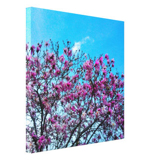 SPRING IN BLOOM canvas Stretched Canvas Print