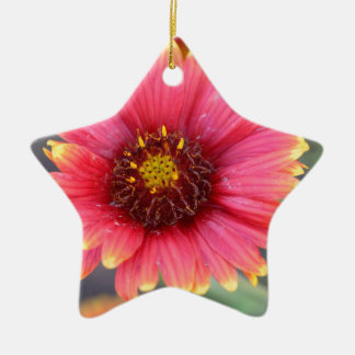 Spring in Bloom Ceramic Ornament