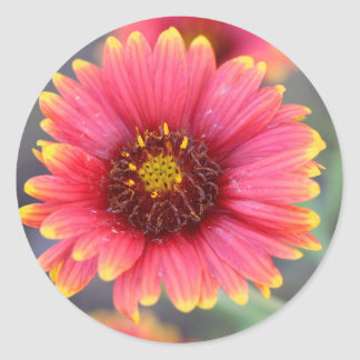 Spring in Bloom Classic Round Sticker