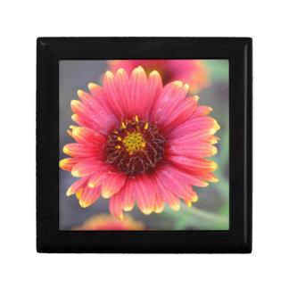Spring in Bloom Gift Box