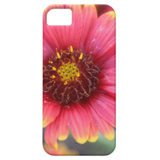 Spring in Bloom iPhone 5 Case
