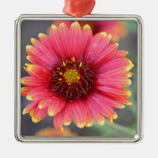 Spring in Bloom Metal Ornament