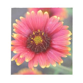 Spring in Bloom Notepad