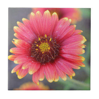Spring in Bloom Small Square Tile