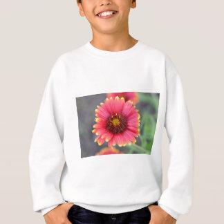 Spring in Bloom Sweatshirt
