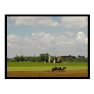 ~ Spring in Lancaster County ~ 116 Postcard