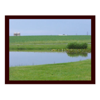 ~ Spring in Lancaster County ~ 4 Postcard