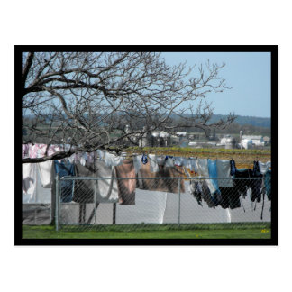 ~ Spring in Lancaster County ~ 56 Postcard