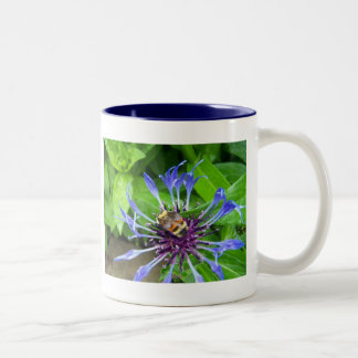 Spring In Maine Coffee Mug