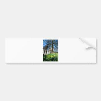Spring in Museum Gardens Bumper Sticker