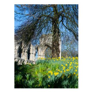 Spring in Museum Gardens Postcard