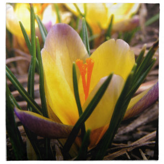 Spring in the air, Crocus are blooming! Napkin