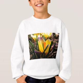 Spring in the air, Crocus are blooming! Sweatshirt