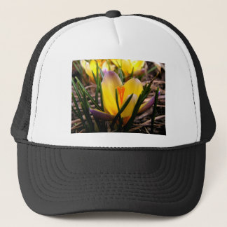 Spring in the air, Crocus are blooming! Trucker Hat