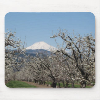 Spring in the Valley Mousepad Mouse Pad