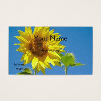 Spring is here! - Springtime sunflowers Business Card