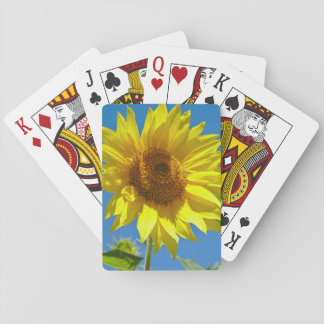 Spring is here! - Springtime sunflowers Playing Cards