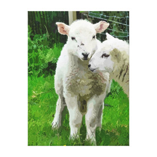 SPRING LAMBS GALLERY WRAPPED CANVAS