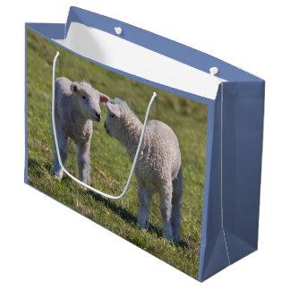 Spring Lambs Gift Bag