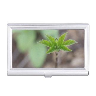 Spring Leaves Business Card Holder