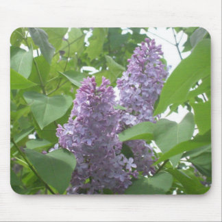 Spring Lilac twins mouspad Mouse Pads