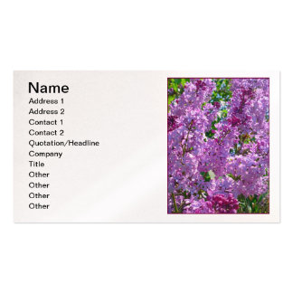 Spring Lilacs Pack Of Standard Business Cards
