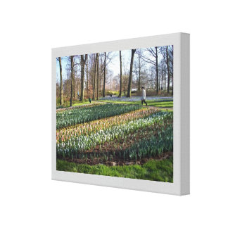 Spring Lilies, Wrapped Canvas