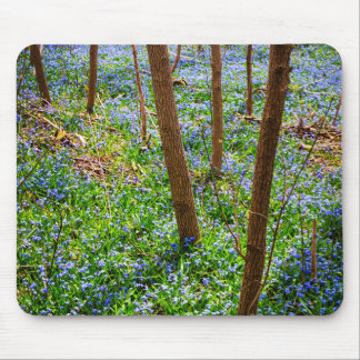 Spring meadow with blue flowers glory-of-the-snow mouse pad
