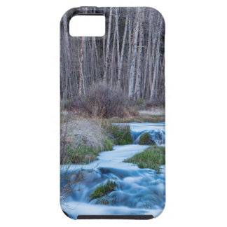 Spring Melt Off Flowing Down From Bonanza iPhone 5 Case