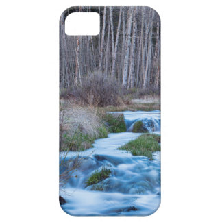 Spring Melt Off Flowing Down From Bonanza iPhone 5 Cases