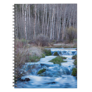 Spring Melt Off Flowing Down From Bonanza Spiral Notebook