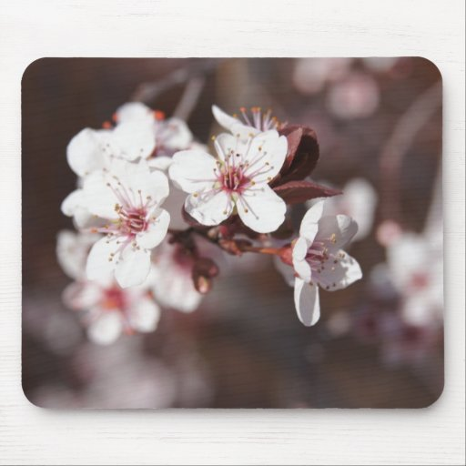 Spring Memories Mouse Pads