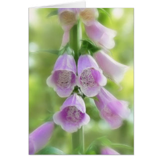 Spring Morning - Foxgloves Greeting Card