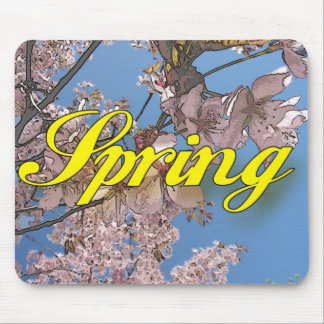 Spring Mouse Mats