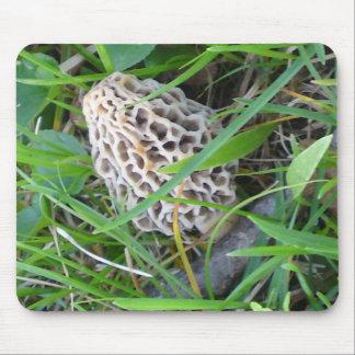 Spring Mushroom Mouse Pad