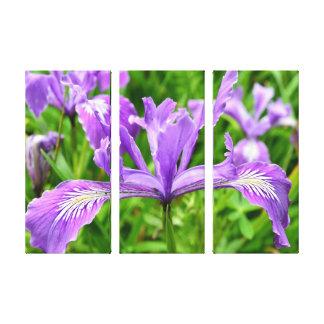 Spring Of Purple Canvas Print