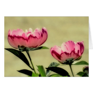 Spring Peonies in Pink Card