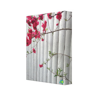 spring picket stretched canvas print