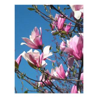 spring pink magnolia flowers in blue sky full color flyer