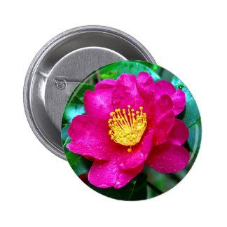 Spring Pink Pinback Buttons