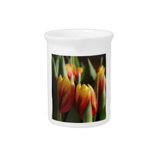spring pitcher