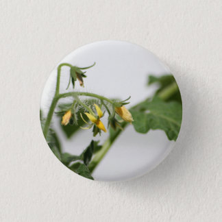 Spring Promise pin