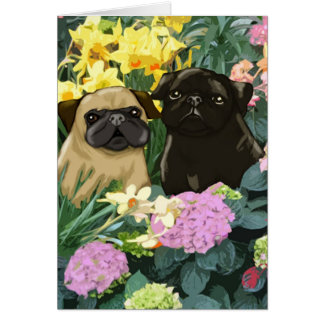 Spring Pugs Greeting Cards