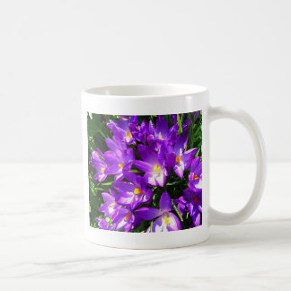 Spring Purple Crocus Flower Mug