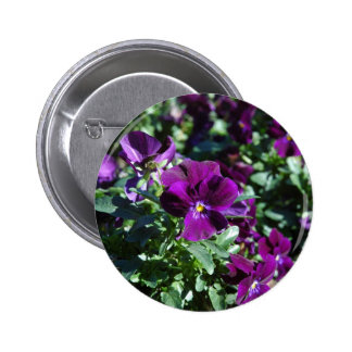 Spring Purple Flower Products Pinback Buttons