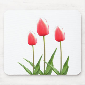 Spring red tulip flowers mouse pad