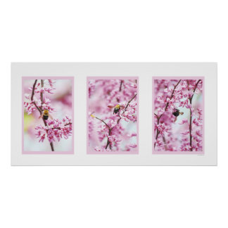 Spring Redbud Bumblebee, Pink Nature Floral Bee Poster